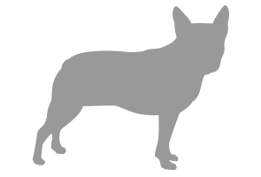 dog_silhouette003.png